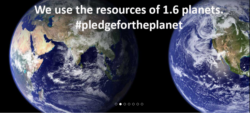 Pledge for the Planet: The case of minerals